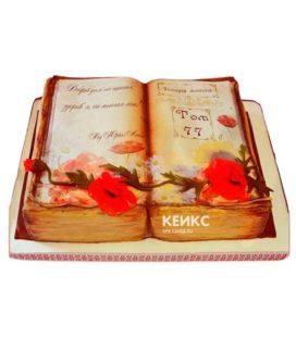 Торт книга жизни 1