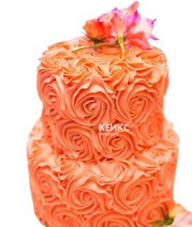 Торт оранжевый 3