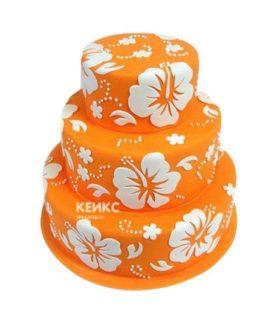 Торт оранжевый 5