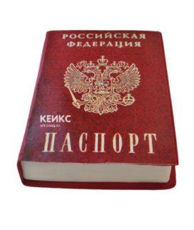 Торт паспорт 6