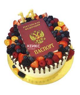 Торт паспорт 7