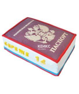 Торт паспорт для мальчика 1