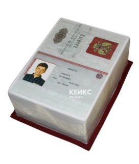 Торт паспорт для мальчика