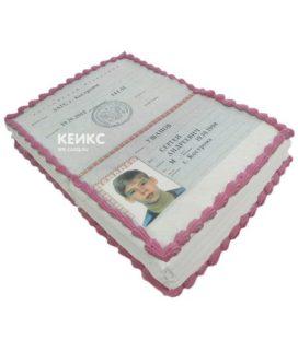Торт паспорт для мальчика 4