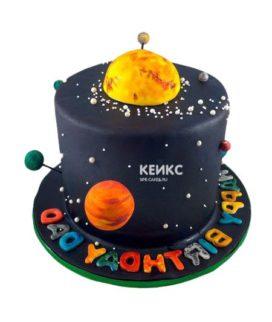 Торт планета-13