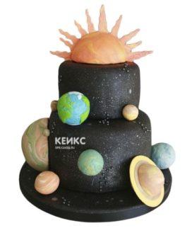 Торт планета-9