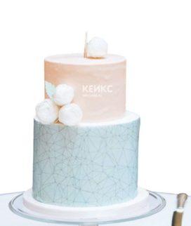 Торт розово голубой 4