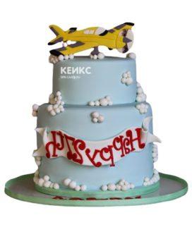 Торт самолет-13