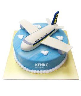 Торт самолет-14
