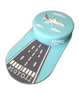 Торт самолет-3