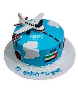 Торт самолет-4