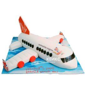Торт самолет-9