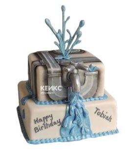 Торт сантехник-9