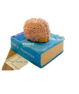 Торт мозги 2