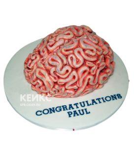 Торт мозги 4