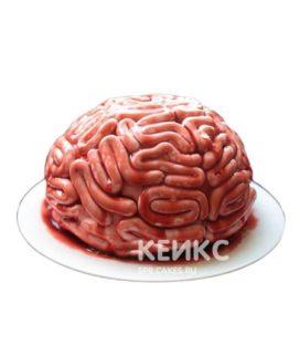 Торт мозги 6