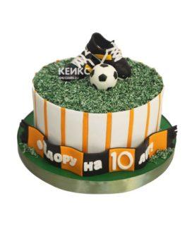 Торт футбол с мастикой 2