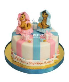 Торт для двойняшек мальчику и девочке 12