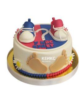 Торт на рождение мальчик или девочка 12