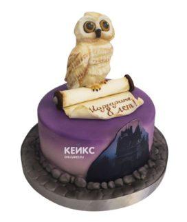 Торт сова 11
